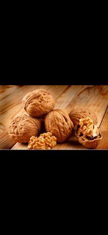 Помощь в вывозе грецкого ореха