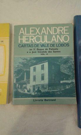 Alexandre Herculano - Cartas de Vale de Lobos.