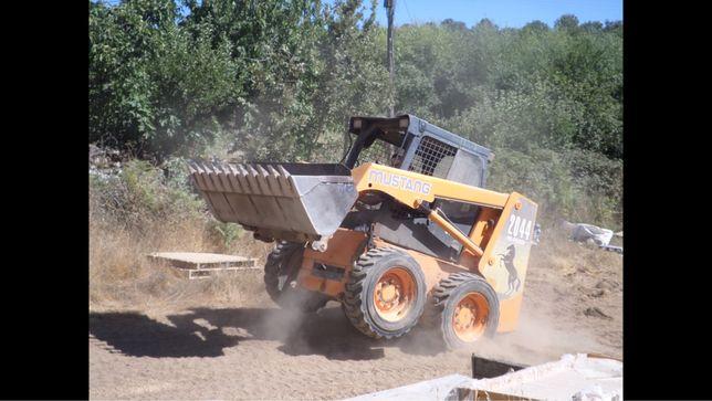 Vendo ou troco Mustang 2044 com braço de escavação