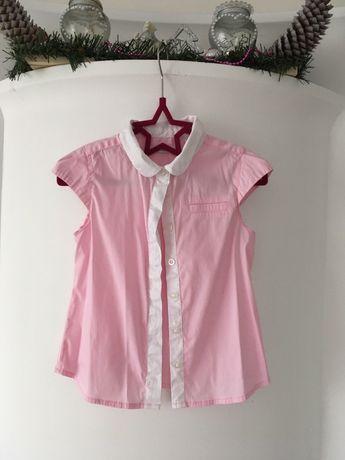Bluzeczka/koszula obaibi 110