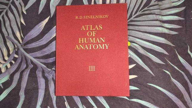 Atlas of Human Anatomy - R.D. Sinelnikov - tom III 3