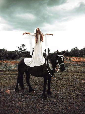 Wydzierżawie konia do sesji zdjęciowych