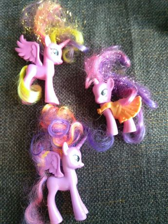 Koniki pony .    .