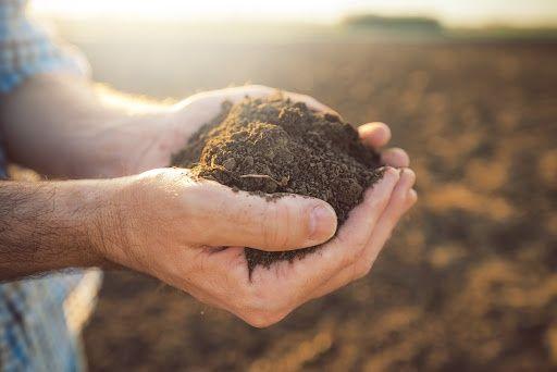 Ziemia urodzajna humus ogrodowa transport