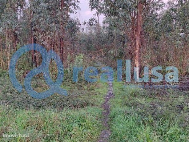 Terreno na freguesia de Oliveirinha, Aveiro, Excelentes condições de f