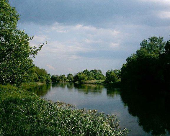 Продам земельну ділянку в селі Москаленки