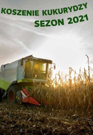 Koszenie kukurydzy na ziarno - usługi dla rolnictwa