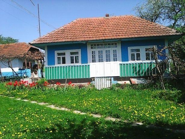 Будинок і земля в с. Пашківці, Хотинський р-н, Чернівецька обл