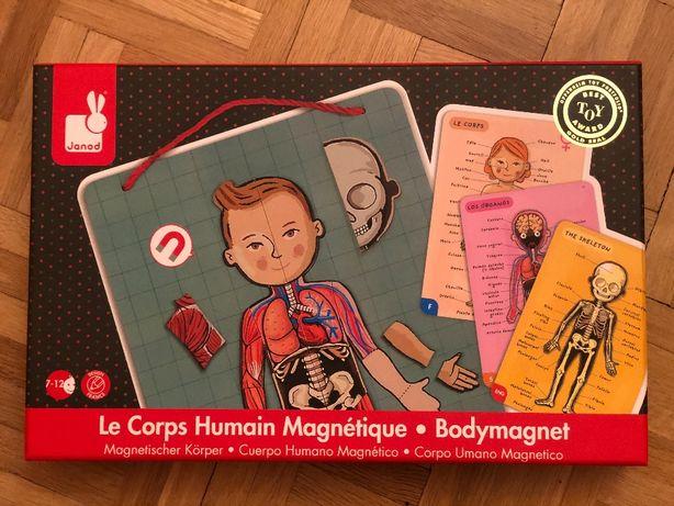 Gra językowa - anatomia człowieka