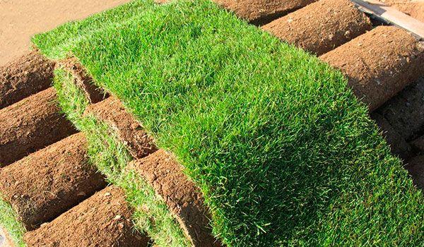 Рулонный газон – идеально ровный + Автоматический полив ( автополив )