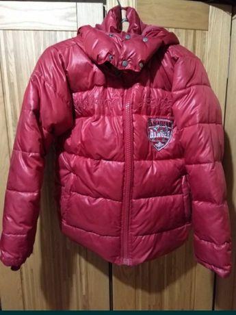 Куртка зимняя Puledro