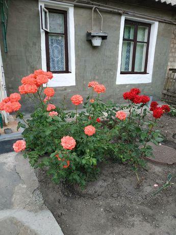 Дом на пос.Юбилейном г.Луганска