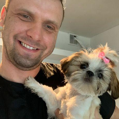 Fryzjer dla psów psi fryzjer grommer
