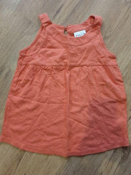 Bluzeczka NEXT 110cm