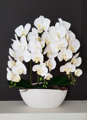 Орхидеи из латекса