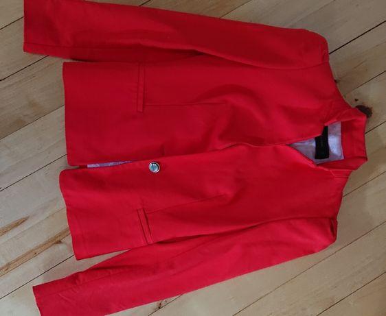 marynarka żakiet zara czerwona ozdobne guziki taliowana xs elegancka