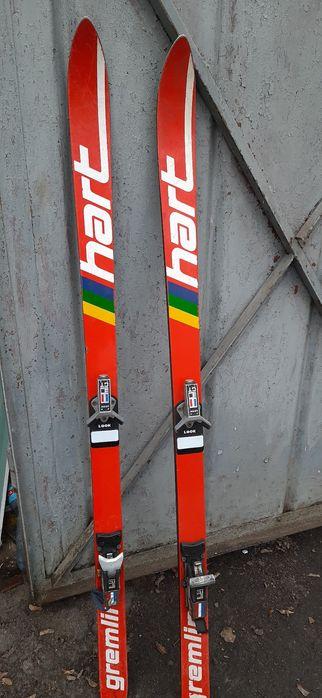 Лыжи горные/лижі гірські 150 см Полтава - изображение 1