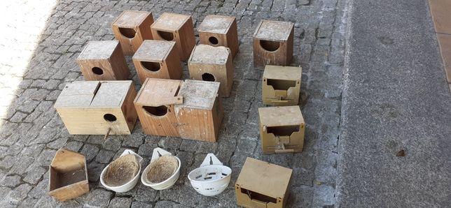 13 Ninhos aves troco 1 caturra