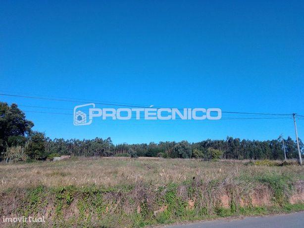 Terreno p/ construção de Moradias Isoladas – Oliveirinha