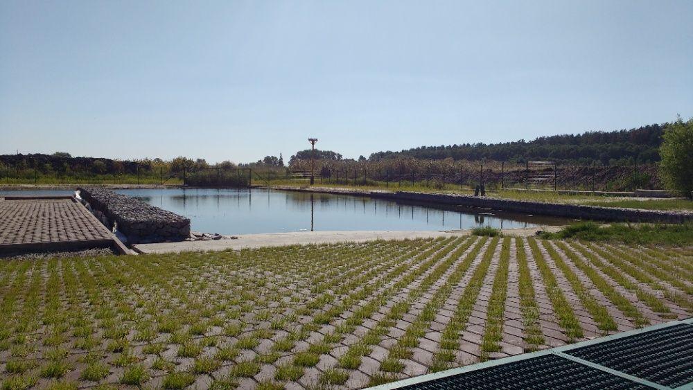Строительство бассейнов, водоемов с нуля, благоустройство на воде