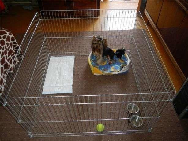 Ограждение, вольер, манеж, клетка для собак кошек птиц 100х100х60 см