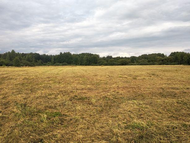 Koszenie łąk mulczowanie nieużytków