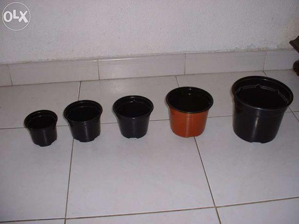 vasos plastico estufa