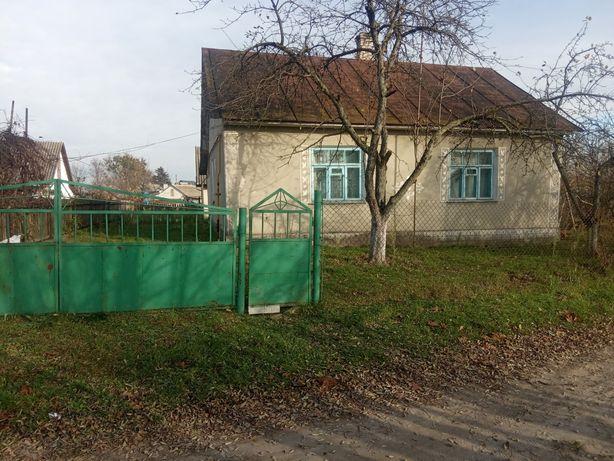 Продам будинок в Радивилівському районі