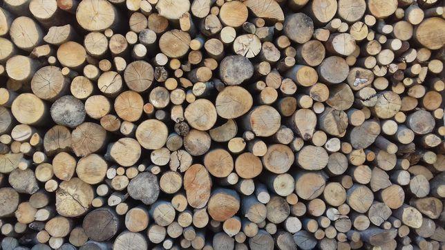 Drewno opałowe bukowe okrąglaki  przesuszone, rozpałka sosnowa gratis.