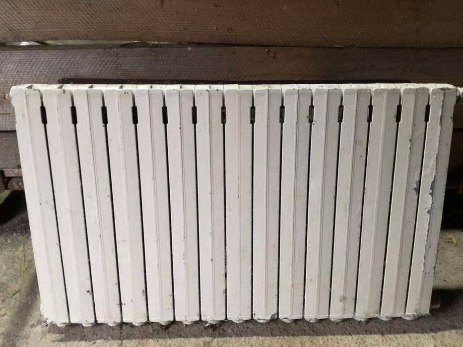 Grzejnik aluminiowy Giby - image 1