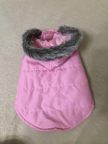 Одежда для мелких пород собак йорков жилетка курточка комбенизон