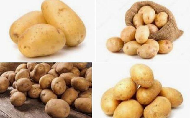 Лук Картофель картошка низкие цены доставка
