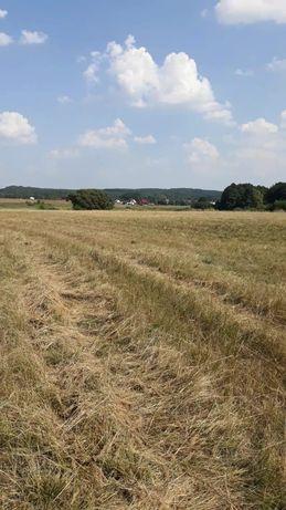 Okazja sprzedam ziemię ziemia działka działkę Lubrza