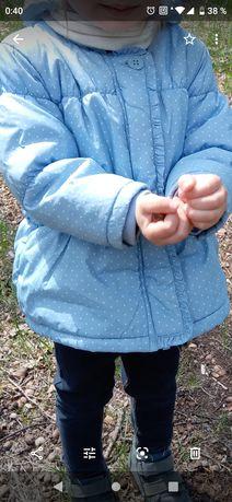 Куртка весна осень next 12-24