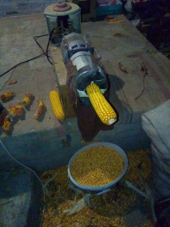 Полузаю кукурудзу в качанах на зерна.