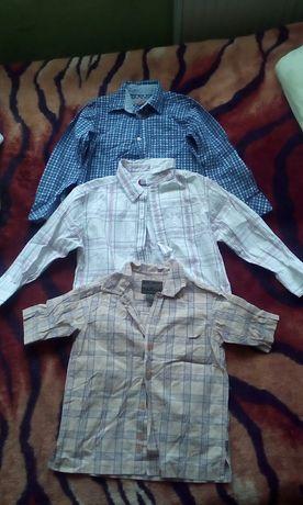 Koszule krótki długi rękaw r.110