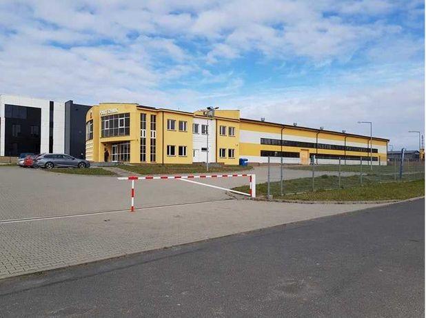 Licytacja Hali produkcyjnej z powierzchnią biurową Kobiałka 17, Płock.