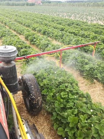 Działki rolne, ziemia uprawna
