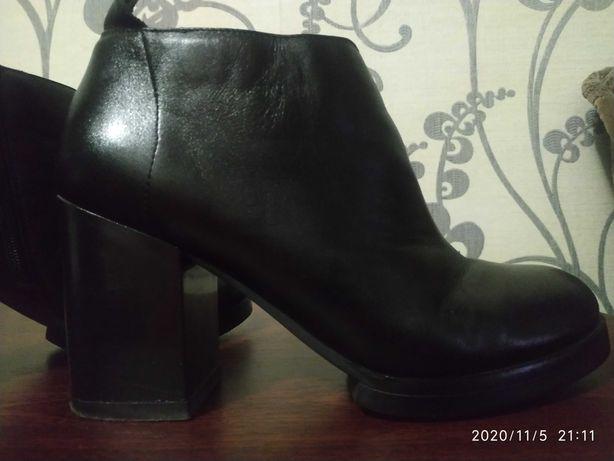 Женские ботинки, осень