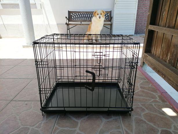 Transportadora desmontável, tipo jaula, para cão