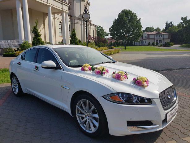 Auto Samochód do Ślubu JAGUAR XF WwaMińskGarwolinOtwockWyszkówLegionow