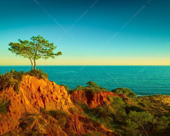 Foto 50x40cm ate 100x80cm Pinheiro Praia Beach Algarve Decoracao Casa-