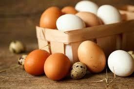 jaja , jajka od kury nioski