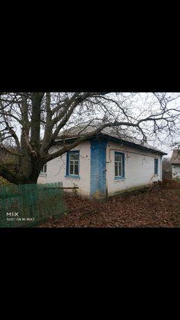 Срочно Продам или дам в аренду Дом в с.Данёвка + сарай + 02.Га огород