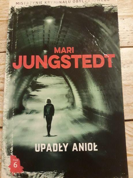 Upadły anioł. Mari Jungstedt