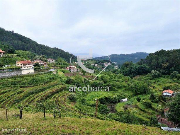 Terreno com 2500m2, anexo agrícola bom acesso e vistas fantásticas - V