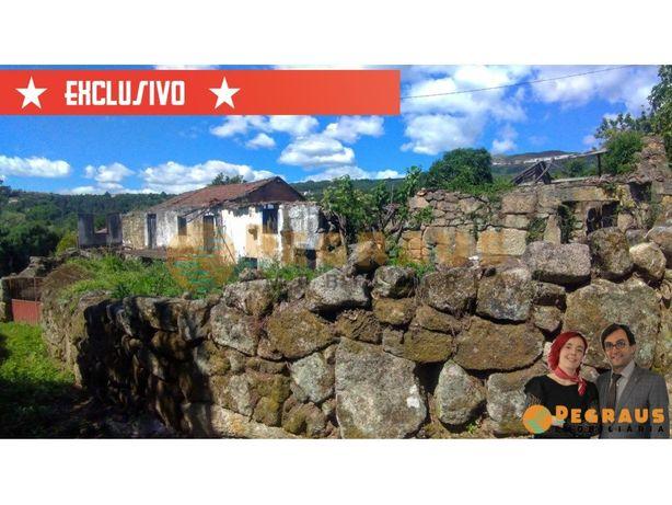 Três Ruinas e Terreno com Vinha, Arvores de Frutos e Poço