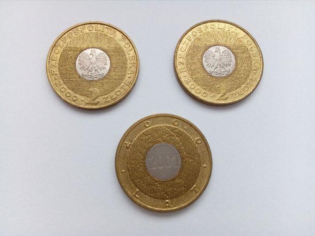 Polska 2 złote, 2000 rok - Rok 2000