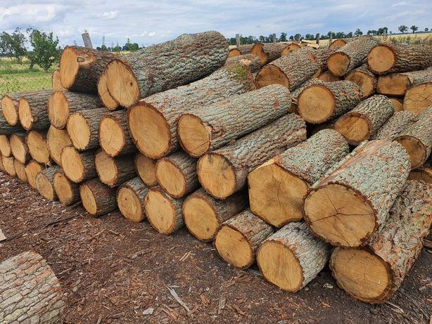 Drewno kominkowe dąb sezonowany