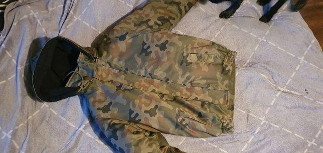 Kurtka wojskowa(cena do negocjacji)